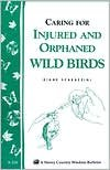 Helping Orphaned or Injured Wild Birds
