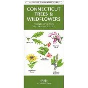 Connecticut Trees & Wildflowers Pocket Guide