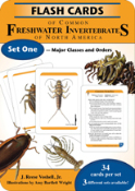 Flashcards of Common Freshwater Invertebrates - Set One