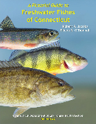 Pictorial Guide to Freshwater Fishes of Connecticut